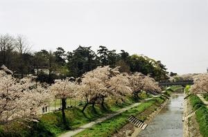 岡崎城2.JPG